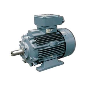 Высоковольтные 3-х фазные асинхронные электродвигатели Loher